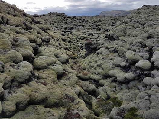 Lavasteiner på Island