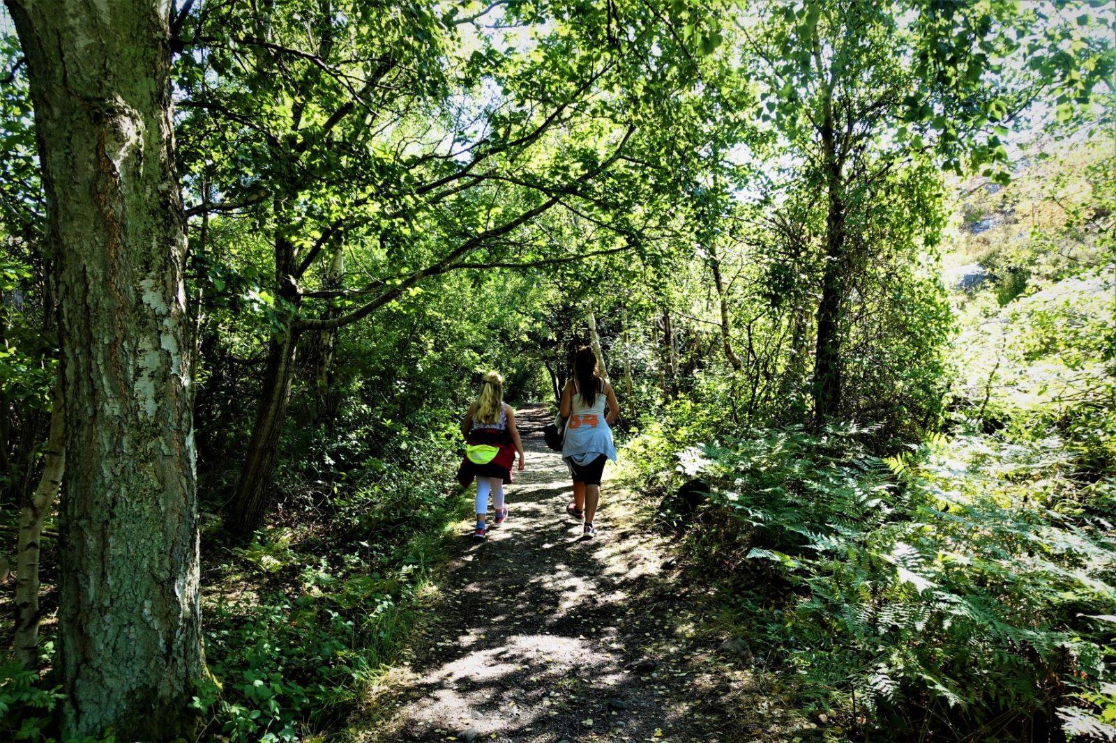 tur igjennom skogen på bohus malmøn