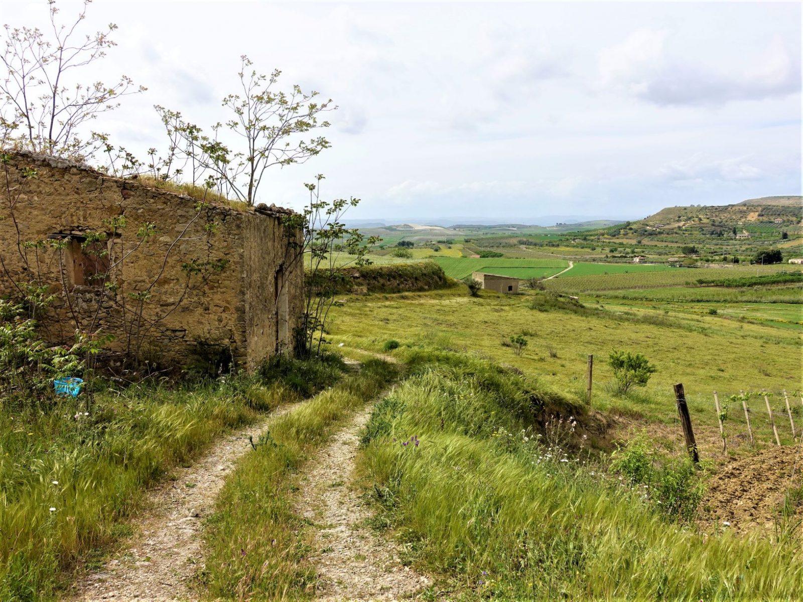 Ruiner og gammel traktorvei på Sicilia