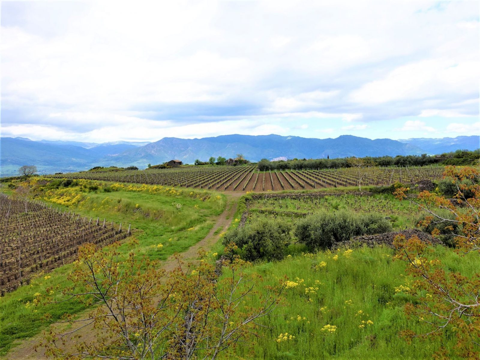 vakkert landskap Sicilia