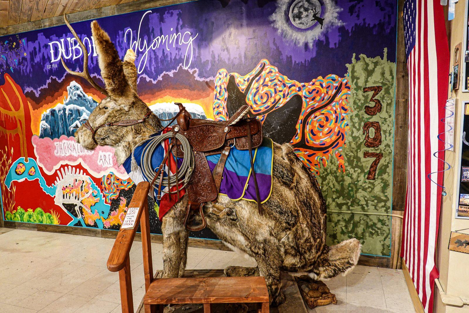 kanin med horn