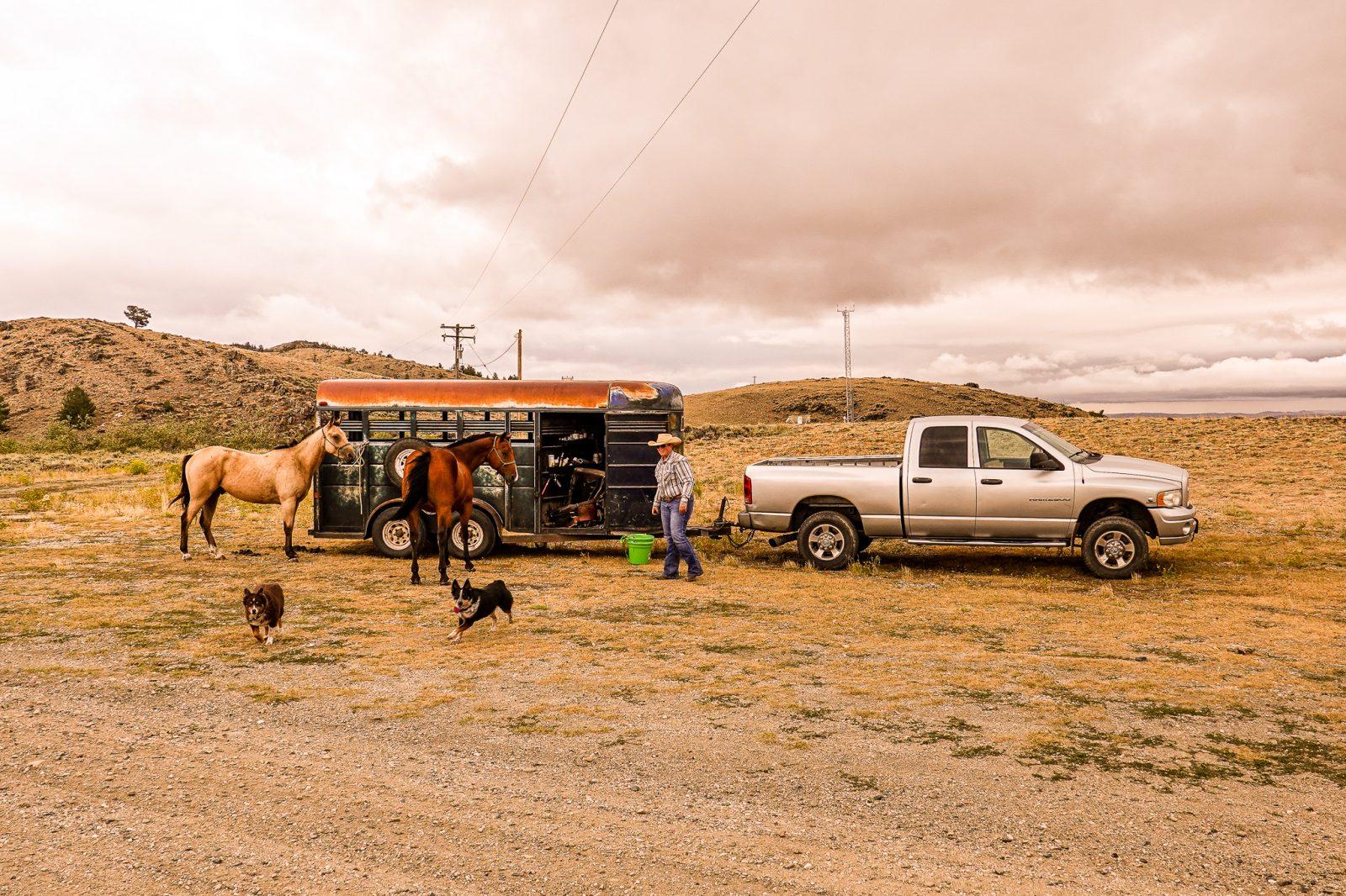 hesteridning i usa