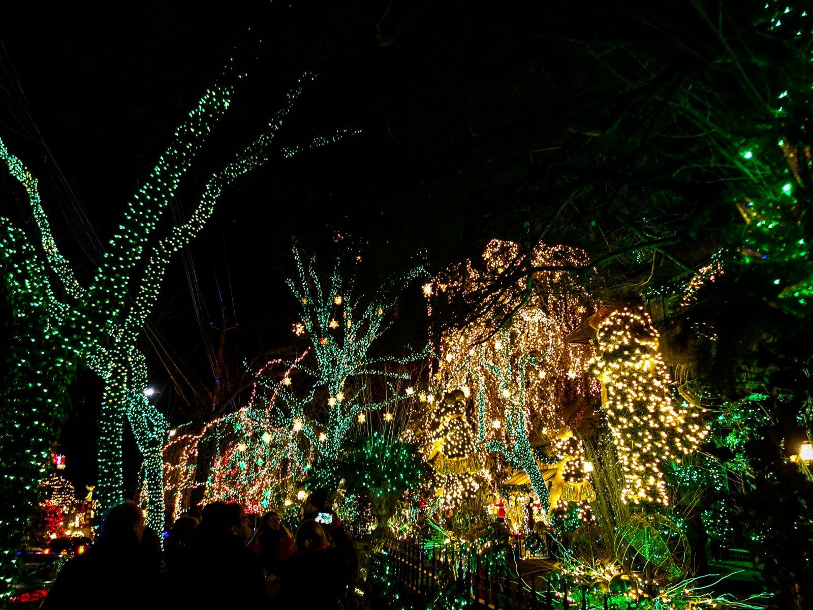 julelyskledde trær